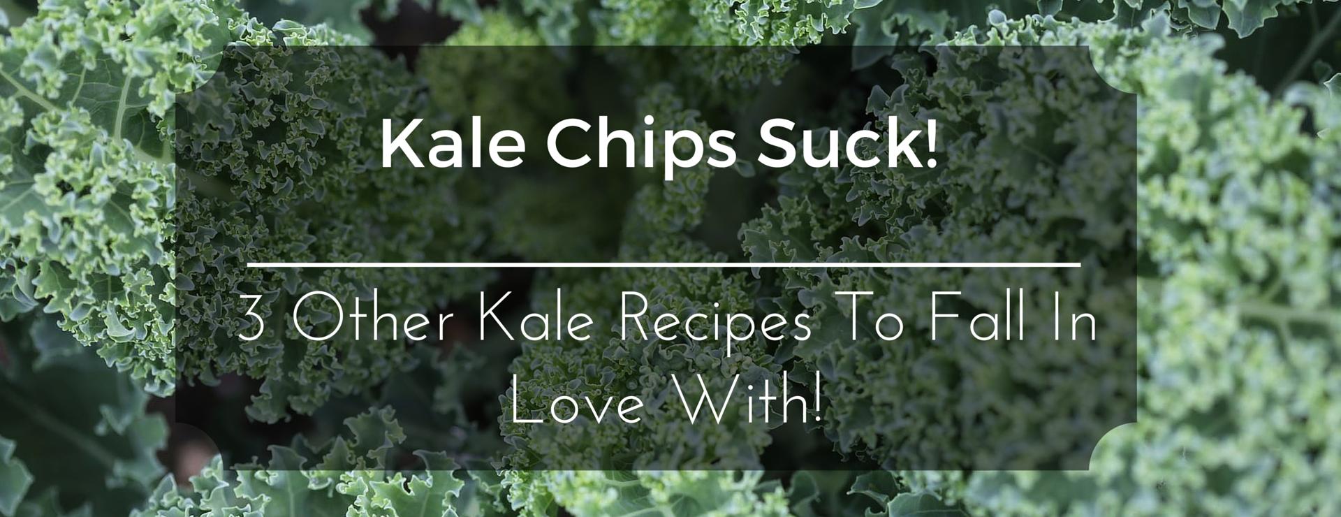 Kale Chips Suck Banner